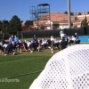 Was UNC Forcing Football Players Into Easy Classes And Majors?