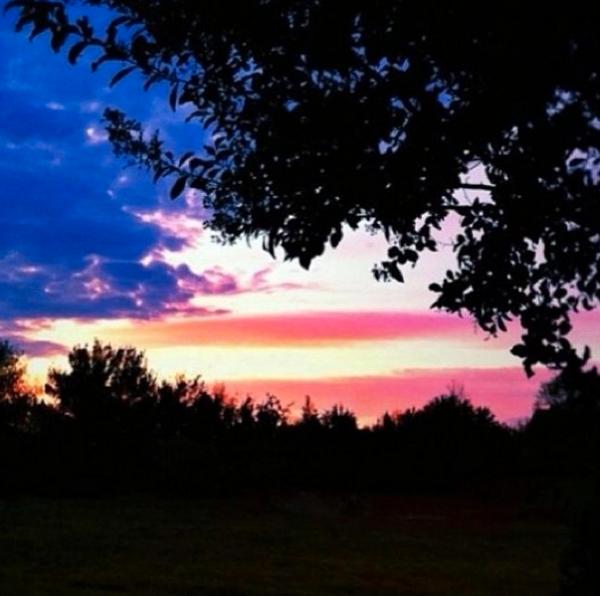 Happy Birthday To The U.S. Army, A Tribute