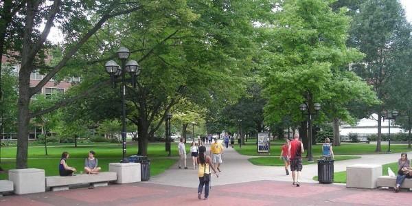 university-michigan-the-diag-quad-campus